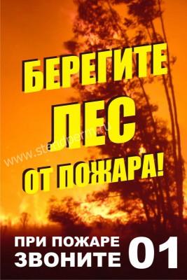 картинки берегите лес от пожара
